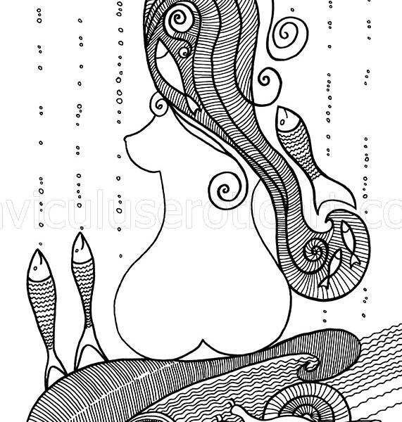 vector illustrartion
